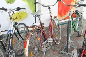 Polkupyöriä parkissa.